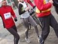 polmaraton_mikolajow_2008_6_20130404_1256416693